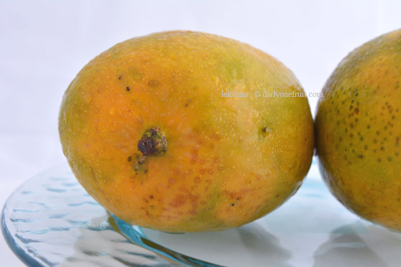 Top 7 Health Benefits of Mango