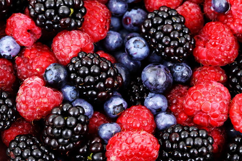 Some Fruits help in Boosting Brain Power
