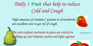 Daily 1 Fruit that help to reduce
