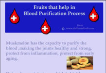 Fruits that help in Blood Purification