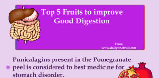 Top 5 Fruits to Improve Good Digestion