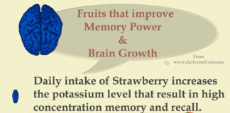 Top 6 Fruits help in improving memory power and brain development