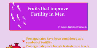 Top Major Fruits that improve Fertility in Men