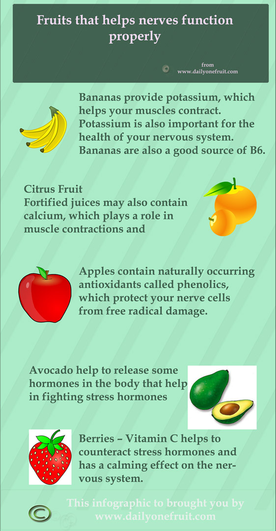 Fruits that helps nerves function properly