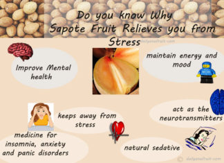 Reason Why Sapote act as a good stress reliever