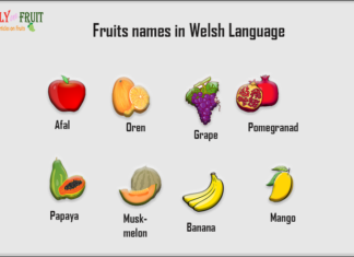 Fruits name in welsh