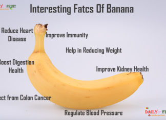 Interesting Facts On Banana