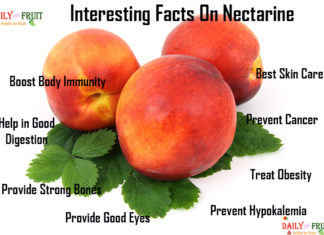 Interesting Facts On Nectarine