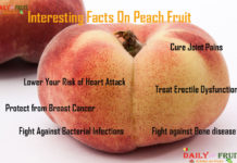 Interesting Facts on Peach