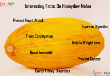 Interesting Facts on honey dew