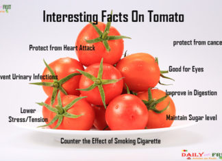 Interesting facts on Tomato
