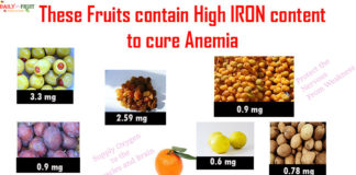 fruits with high iron