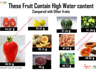 fruits with high water content
