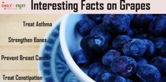 Interesting Facts On Grapes