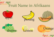 Fruit Name in Afrikaans