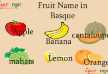 Fruit Name in Basque