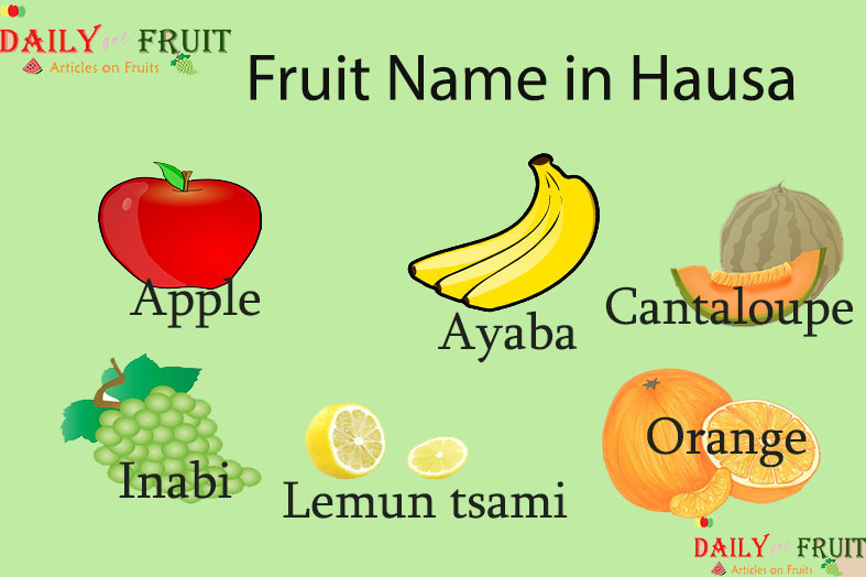 Fruit Name in Hausa