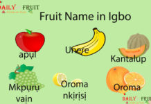 Fruit Name in Igbo